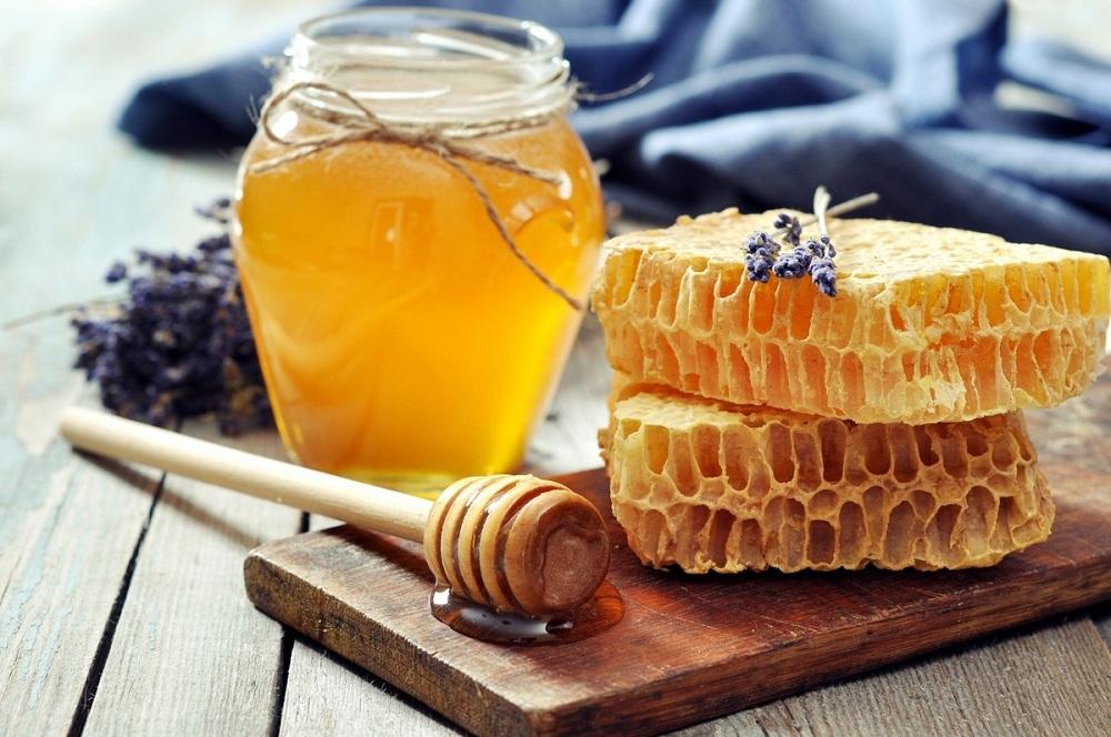 Stedelijke Bijenteelt in Nederland: Tips